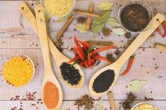 Kruid met Spaanse peper op een houten achtergrond met verschillende grutten Stock Foto