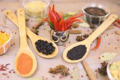 Kruid met Spaanse peper op een houten achtergrond met verschillende grutten Stock Fotografie