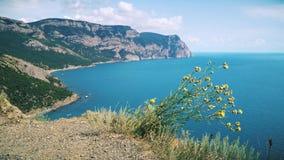 Kruid op Krimbergen en de Zwarte Zee stock footage