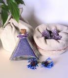 Kruiden aromatherapy geneeskunde, Royalty-vrije Stock Afbeelding