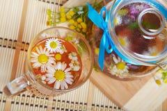 Kruiden bloementhee met kamille Stock Foto