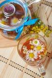 Kruiden bloementhee met kamille Stock Fotografie