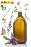 Kruiden en alternatieve geneeskunde concecpt stock afbeelding