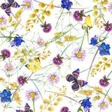 Kruiden en bloemen met vlinderachtergrond De illustratie van de waterverf royalty-vrije illustratie