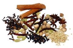 Kruiden en kruiden De ingrediënten van het voedsel en van de keuken Geïsoleerdj op witte achtergrond royalty-vrije stock afbeelding
