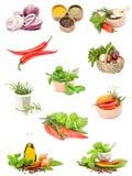 Kruiden en kruiden Stock Afbeeldingen