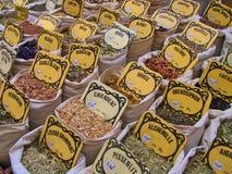 Kruiden en kruiden Royalty-vrije Stock Fotografie