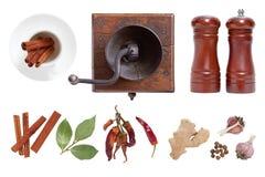 Kruiden en kruiden voor voedsel De molen en de zoute schudbeker stock afbeeldingen