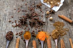 Kruiden en kruiden op een houten raad Kruidlepel Stock Afbeelding