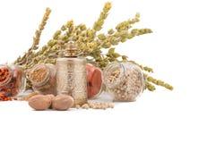 Kruiden en kruiden op witte achtergrond Bergthee, paprika, kerrie, koriander en molen voor kruiden stock fotografie