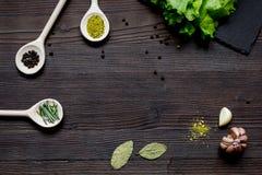 Kruiden en verse salade op de donkere houten mening van de lijstbovenkant Royalty-vrije Stock Foto