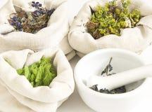 Kruiden, geneeskrachtige grassen   royalty-vrije stock afbeelding