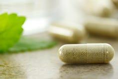 Kruiden geneeskunde in capsules Stock Foto