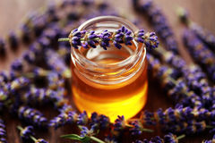 Kruiden honing royalty-vrije stock afbeelding