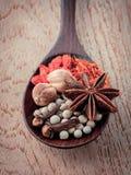Kruiden in houten lepelsaffraan, huwelijkswijnstok (Chinese wolfberry Stock Fotografie