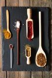 Kruiden in houten werktuigen Royalty-vrije Stock Afbeelding