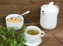 Kruiden jiaogulan thee stock afbeelding