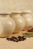 Kruiden - kaneel, piment en laurels Royalty-vrije Stock Afbeelding