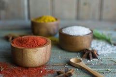 Kruiden kruiden Kerrie, zout, pepersaffraan, kurkuma, tandorimasala en andere op een houten rustieke achtergrond royalty-vrije stock foto