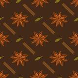 Kruiden naadloos patroon Steranijsplant, cardamon, pijpje kaneel Royalty-vrije Stock Afbeelding
