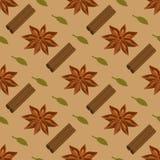 Kruiden naadloos patroon Steranijsplant, cardamon, pijpjes kaneel Stock Afbeeldingen