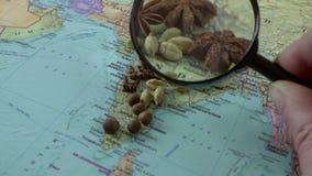 Kruiden onder een vergrootglas op een kaart van India De uitvoer van kruiden stock footage