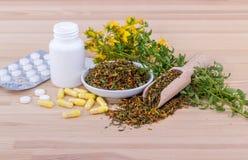 Kruiden perforatum Medicine stock afbeelding