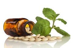 Kruiden perforatum Medicine Stock Afbeeldingen