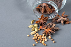 Kruiden, steranijsplant, kardemom en koriander. Stock Fotografie