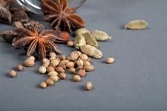 Kruiden, steranijsplant, kardemom en koriander. Stock Afbeelding