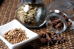 Kruiden, steranijsplant, kardemom en koriander. Royalty-vrije Stock Afbeelding