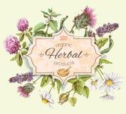 Kruiden uitstekende banner Royalty-vrije Stock Foto