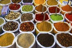Kruiden van India Royalty-vrije Stock Foto's