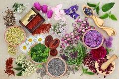 Kruiden voor Alternatieve Kruidengeneeskunde Royalty-vrije Stock Foto's