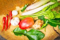 Kruiden voor het koken Stock Fotografie