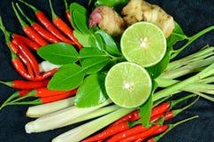 Kruiden voor Thaise Kruidige Citroengrassoep. Royalty-vrije Stock Afbeelding