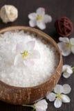 Kruiden zout en bloemen royalty-vrije stock afbeelding