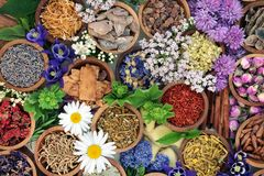 Kruidengeneeskunde met Kruiden en Bloemen Royalty-vrije Stock Fotografie