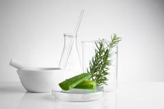 kruidengeneeskunde natuurlijk organisch en wetenschappelijk glaswerk stock afbeelding