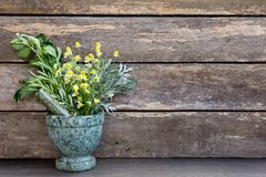 Kruidengeneeskunde - verse bossen van kruiden in groen marmeren mortier royalty-vrije stock foto