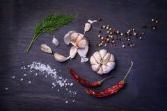 Kruideningrediënten: kruiden, pepermengeling, Spaanse peperpeper, knoflook, dille, zout Hoogste mening over rustieke houten lijst Stock Afbeeldingen