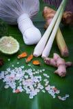 Kruidenkompresbal voor Thaise Massage en kuuroord populaire behandeling stock afbeelding
