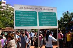 Kruidenmedische adviezen op een landbouwersmarkt in havanna-Stad royalty-vrije stock afbeeldingen