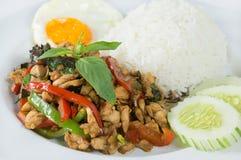 Kruidig gehakt over rijst Stock Fotografie