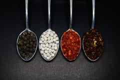 Kruidig Kruiden Thaise kruiden op lepel Peper en caryenne peppe Stock Foto