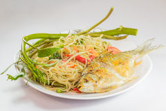 Kruidig Thais voedsel met geroosterde vissen Stock Fotografie