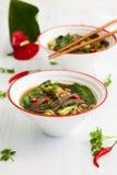 Kruidige Aziatische rundvleessoep Stock Afbeeldingen