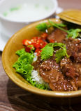 Kruidige Chinese rundvleeshutspot met rijst royalty-vrije stock fotografie