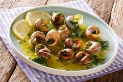 Kruidige Franse die slakken, escargot met boter, peterselie, citroen wordt gekookt royalty-vrije stock foto's