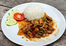 Kruidige gebraden kip met basilicumbladeren, tomaat, komkommer Basil Fried Chicken Kruidige Thaise basilicumkip klaar om op witte royalty-vrije stock afbeelding